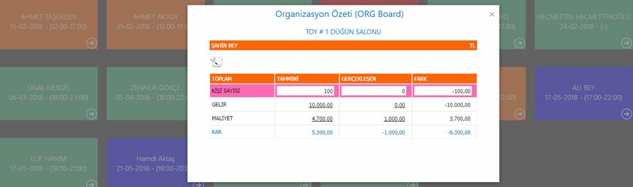 organizasyon özeti ekranı